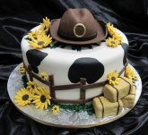 small-western-wedding-cakes